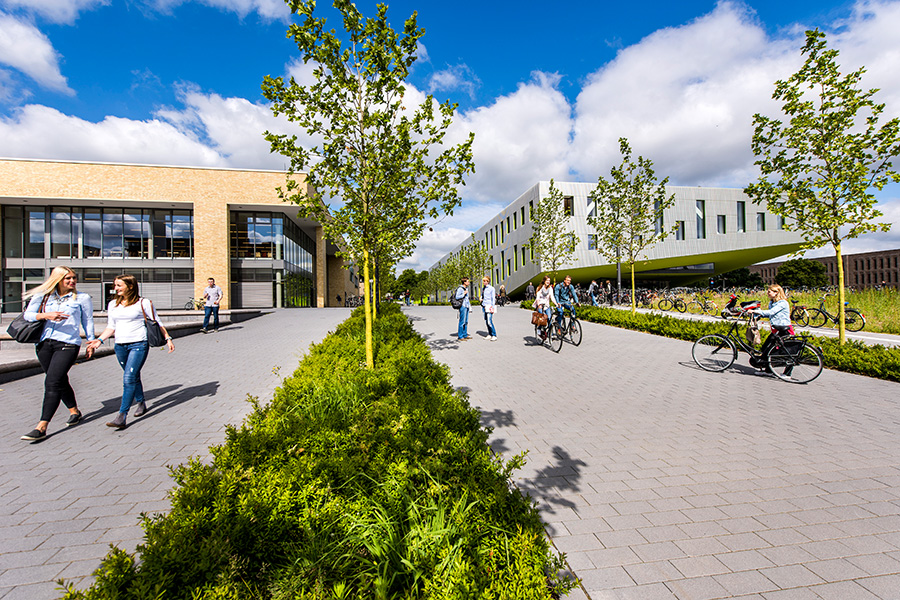 Studierende auf dem Campus Westerberg